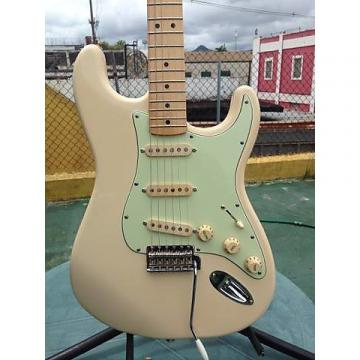 Custom Fender MIM with Handwound Custom Pickups & Custom wiring  2014