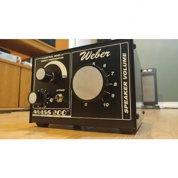 Custom Weber Mass 200 Attenuator