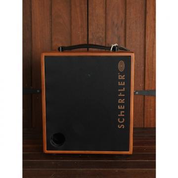 Custom Schertler David 100w Acoustic Combo NEW MODEL