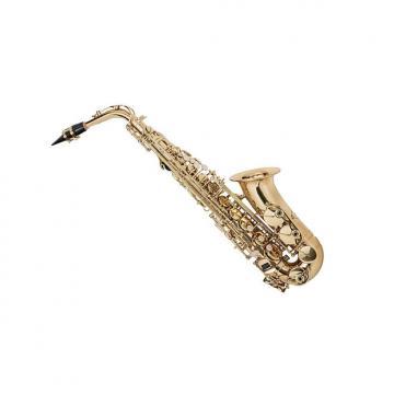 Custom Eb Alto Saxophone Gold Lacquer Finish, Pad Saver, Neck Strap, Hard Case (609436)