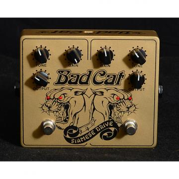 Custom Bad Cat Siamese Drive