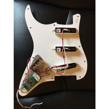 Custom EMG DG20 David Gilmour Pickups 2000s White