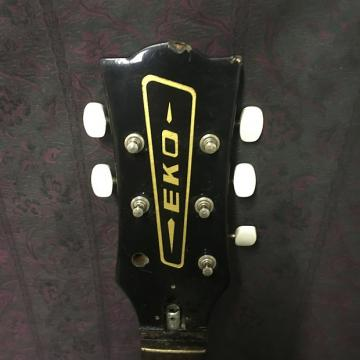 Custom Eko Bolt On Neck