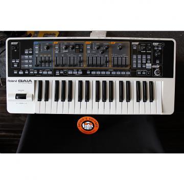 Custom Roland Gaia SH-01