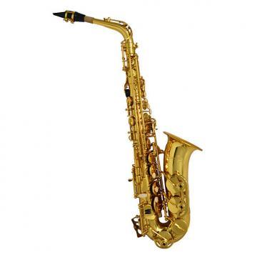 Custom Schiller American Heritage 400 Alto Saxophone - Gold Lacquer