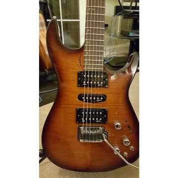 Custom Godin Freeway SA Guitar 2010 Lightburst Leaftop