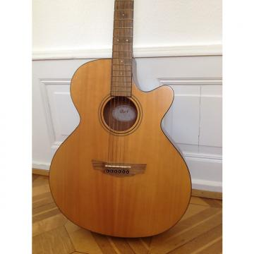 Custom Cort SFX-1F NS (steel strings) with Fishman Classic4 Pickup + EQ 2000s Brown Natural