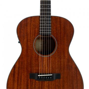 Breedlove Model Passport OM/MME Acoustic Electric Guitar With Gigbag