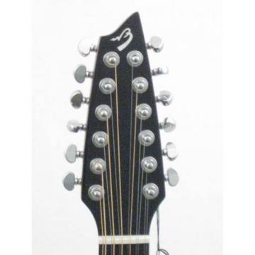 Breedlove Atlas 12-String Concert Acoustic Electric Guitar w/Case