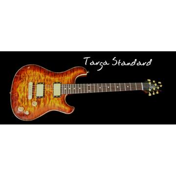 Custom Built TS Flame Maple Electric Guitar
