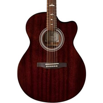 PRS A10ETO SE Angelus A10E Solid-Body Electric Guitar, Tortoise Shell