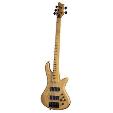 Schecter Stilleto Session-5 Fretless 5-String Bass Guitar, ANS