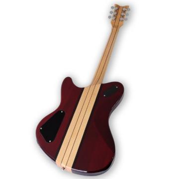 Schecter Dan Donegan Signature Guitar, Ultra DD