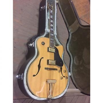 Custom Washburn J6 Maple