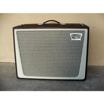 Custom Tone King Metropolitan Combo Cabinet in vintage  brown with antique white trim(empty)
