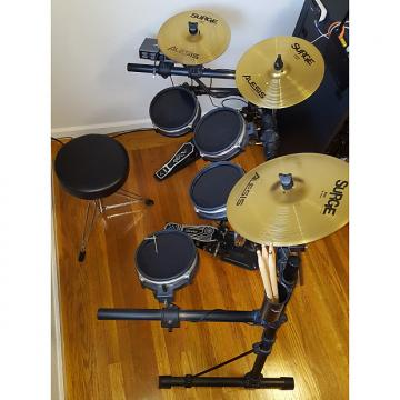 Custom E-Drums Alesis USB Pro Drums Hybrid Acoustic Electronic Drumset with Surge Choke Cymbals & Extras