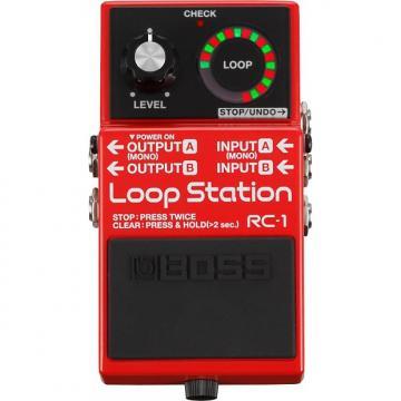 Custom BOSS RC-1 Loop Station Pedal