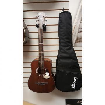 Custom Ibanez AW54MINIGB-OPN Acoustic-Electric 3/4 size Guitar