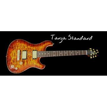 Custom Built TS Flame Maple Electric Guitar
