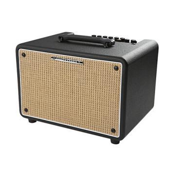Ibanez Troubadour T150S 150W Stereo Acoustic Combo Amp Black