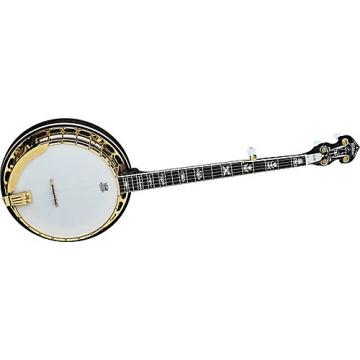 Washburn B17 Sunburst 5-String Banjo w/case Sunburst