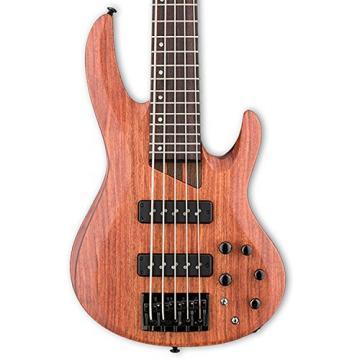 ESP LB1005SEBNS-KIT-2 B Series B-1005SE 5-String Electric Bass Guitar, Natural Satin